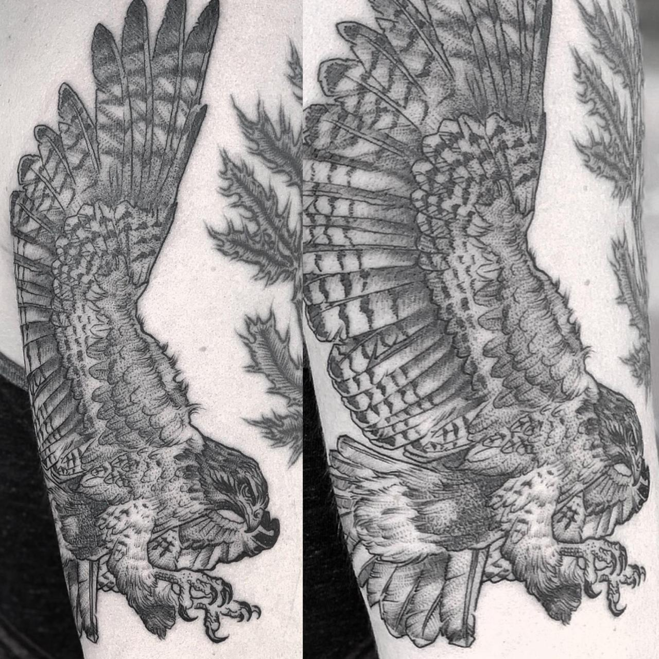 Recently finished red tailed hawk on the back of my arm. Done by Chris Carter at Cloven Tattoo, Columbus, OH