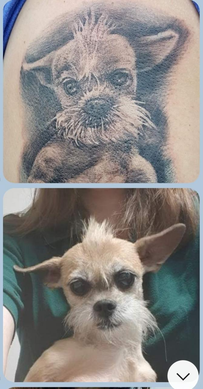 Your opinion on my new tattoo of my fugly but cute dog. I think the eyes are wrong. I'm a little sad about it as they're her biggest feature. Can they be fixed? Tattoo shop said it was due to the curve of the arm.