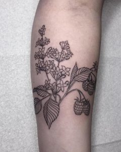 Lilacs and raspberries done by Brittany @ Blue Lotus Tattoo in Madison, WI. We will be finishing the other side of my arm once this piece heals!