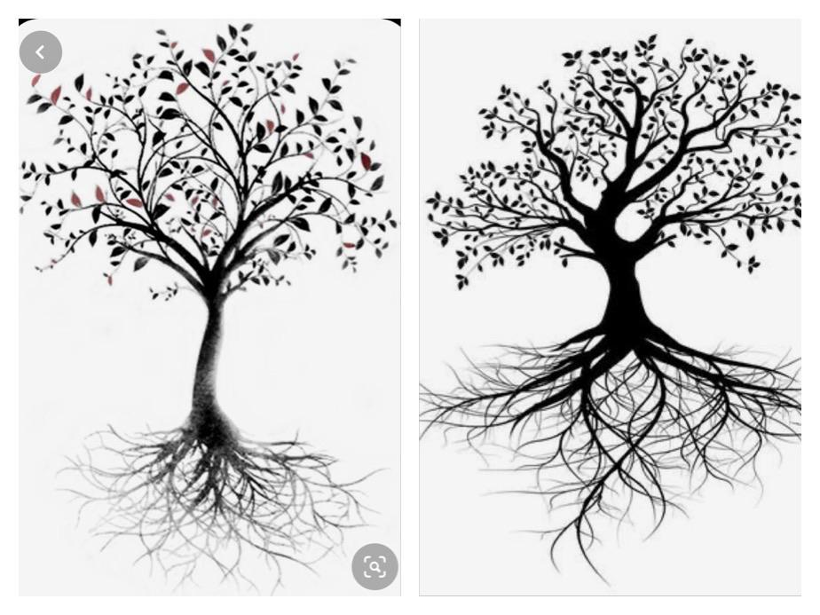 "Who can draw a tattoo for me? I'd like it to look like a mix of the trees below. Scroll ""rooted"" and ""fearless"" in the roots. A few of the leaves colored in. One each of these colors: orange, purple, red, light blue, dark blue, yellow, green. I'll pay $25 for the drawing I like."