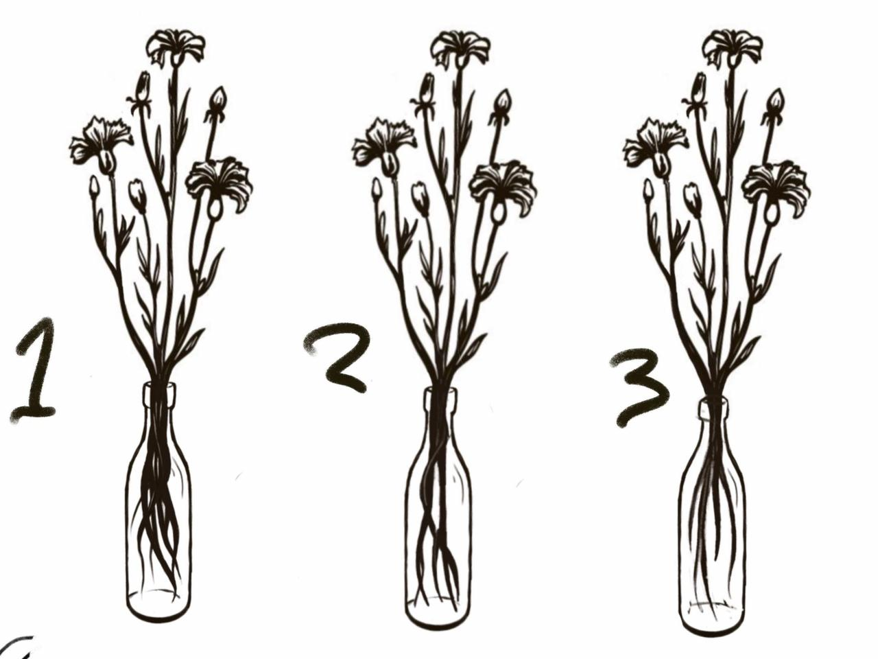 What roots look the best? Let me know what you think of these flowers overall!