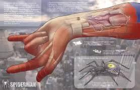 Looking for someone to help me design a tattoo for my wrists that look like organic web shooters, similar to the ones Tobey Maguire had in his movies.