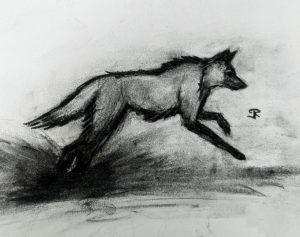 Maned Wolf - aspiring tattoo artist, just starting out, critique welcome :)