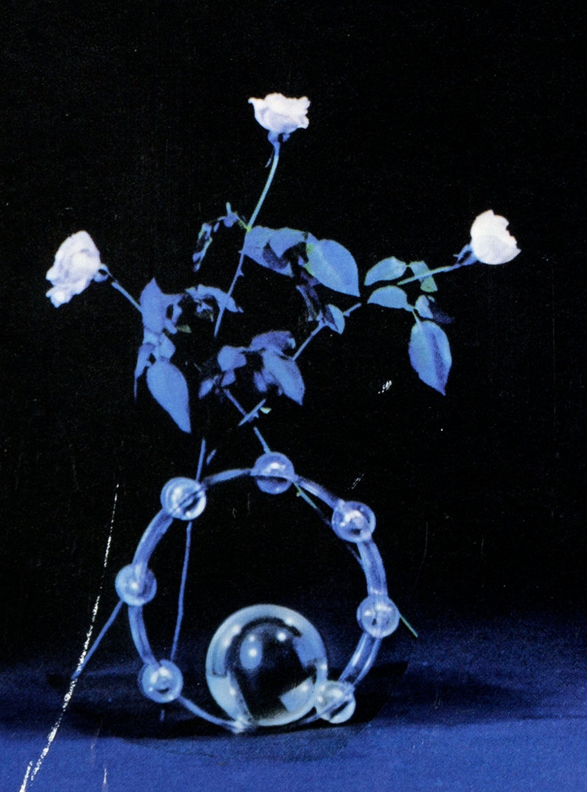 I think my next tat is going to be some version of this, it's from the cover of Stevie Nicks' Bella Donna album. Shorter rose stems maybe. I want it on the inside of my forearm but I've got quite short arms and as is it would probably cover more than half to preserve the detail!