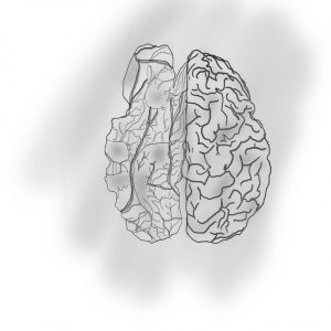 Working on a memorial tattoo design, half brain half walnut. Struggling with making it realistic. Don't need strict realism but at least recognizable. Thoughts?