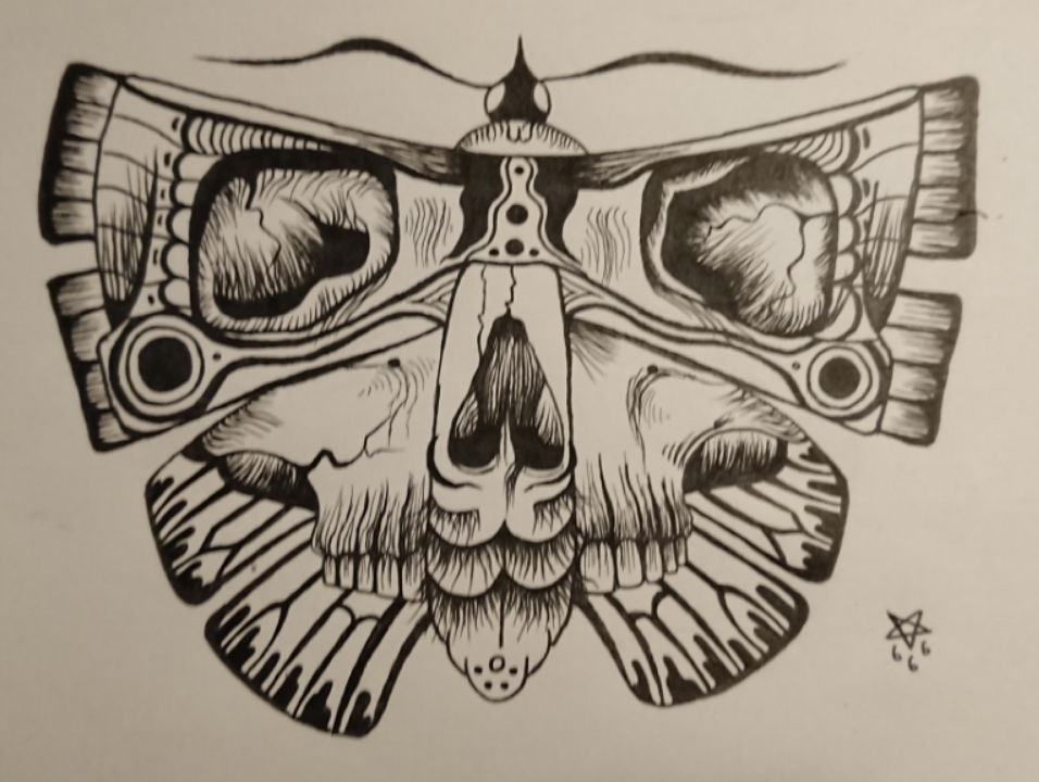 I like moths. I know my cam sucks, but i share my scribble anyway.