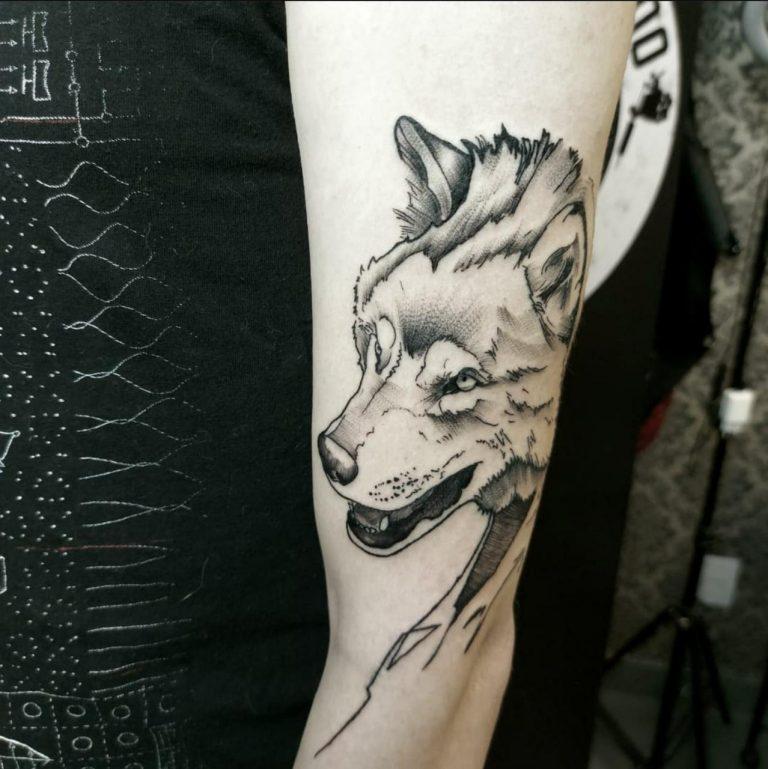 Finally got courage to get an arm tattoo. Made by @alexandre_artattoo